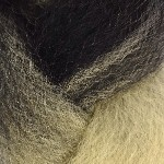 Color Swatch: 1B Off Black with 613 Platinum Blond Tips