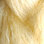Color Swatch: Light Gold