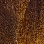 Color Swatch: T1B/30 Off Black with Light Auburn Tips